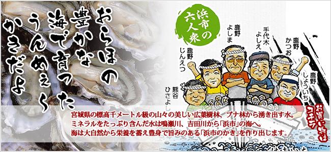 プロのかき屋 浜市六人衆が作る「浜市のかき」大自然からの栄養を蓄えた旨みのある上質の牡蠣。